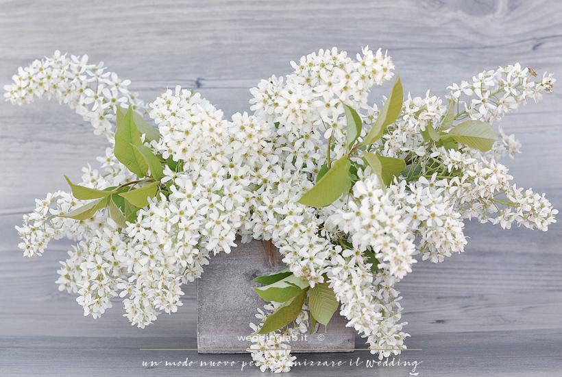 Fiorellini di lillà: fiori per un matrimonio in primavera