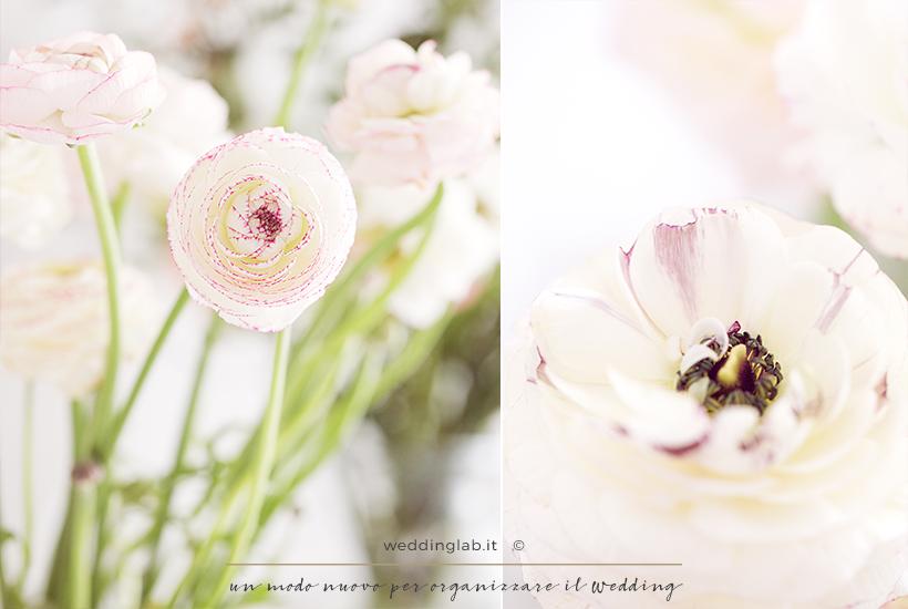 matrimonio invernale- tipi di fiori: ranuncoli e anemoni